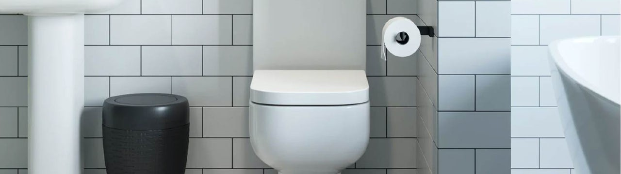 Why do toilets have toilet seats?