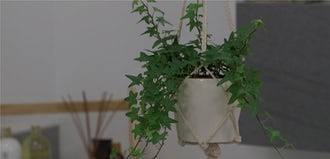 How to make your own macramé plant hanger