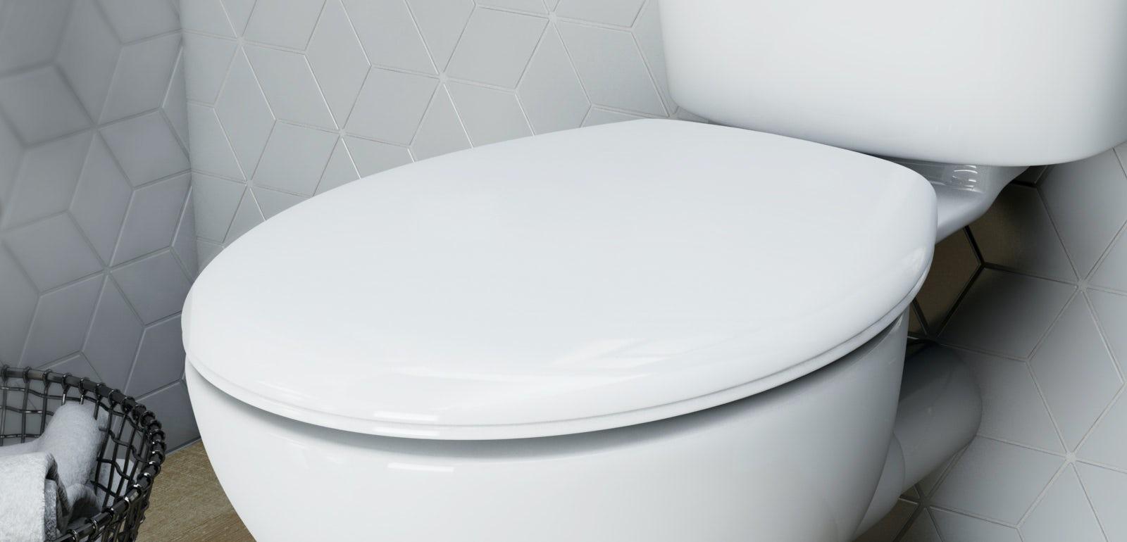 Are Toilet Seats A Standard Size Victoriaplum Com