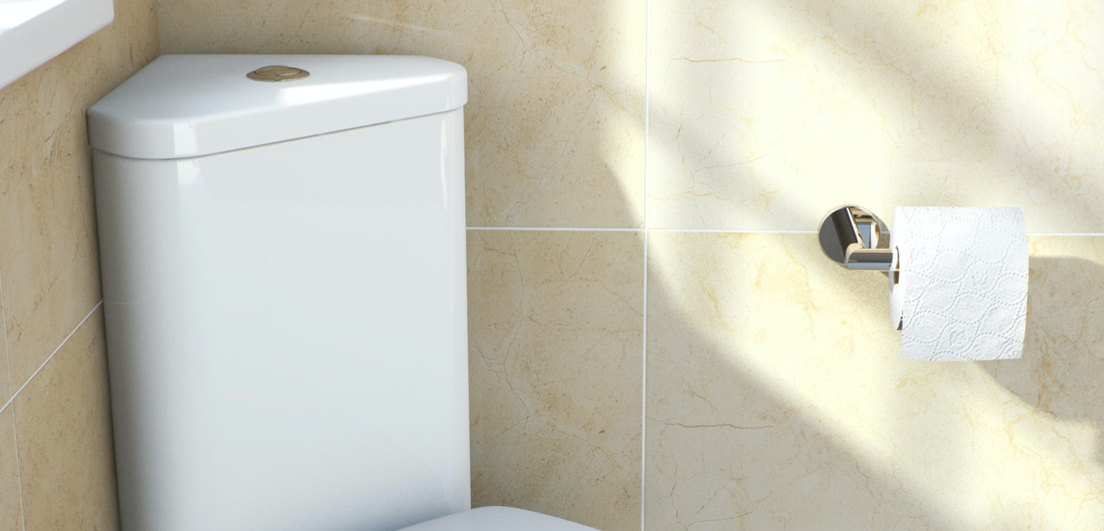 Corner toilet buying guide