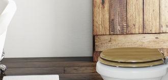 Sensational Toilet Comforts Plastic Or Wood Victoriaplum Com Inzonedesignstudio Interior Chair Design Inzonedesignstudiocom
