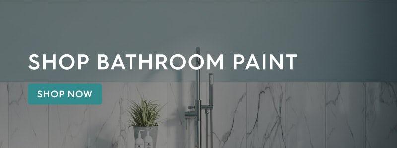 Shop bathroom paint