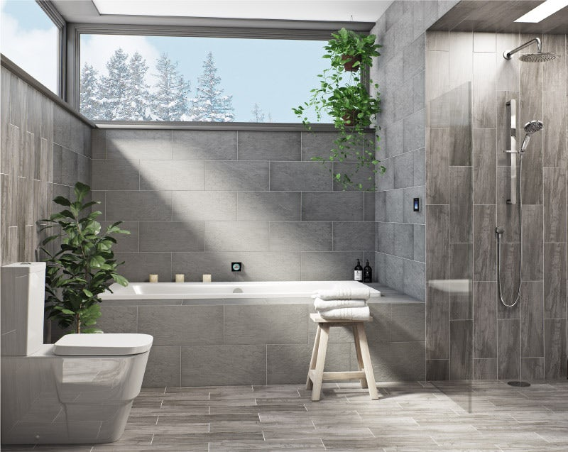 Plant ideas for the bathroom