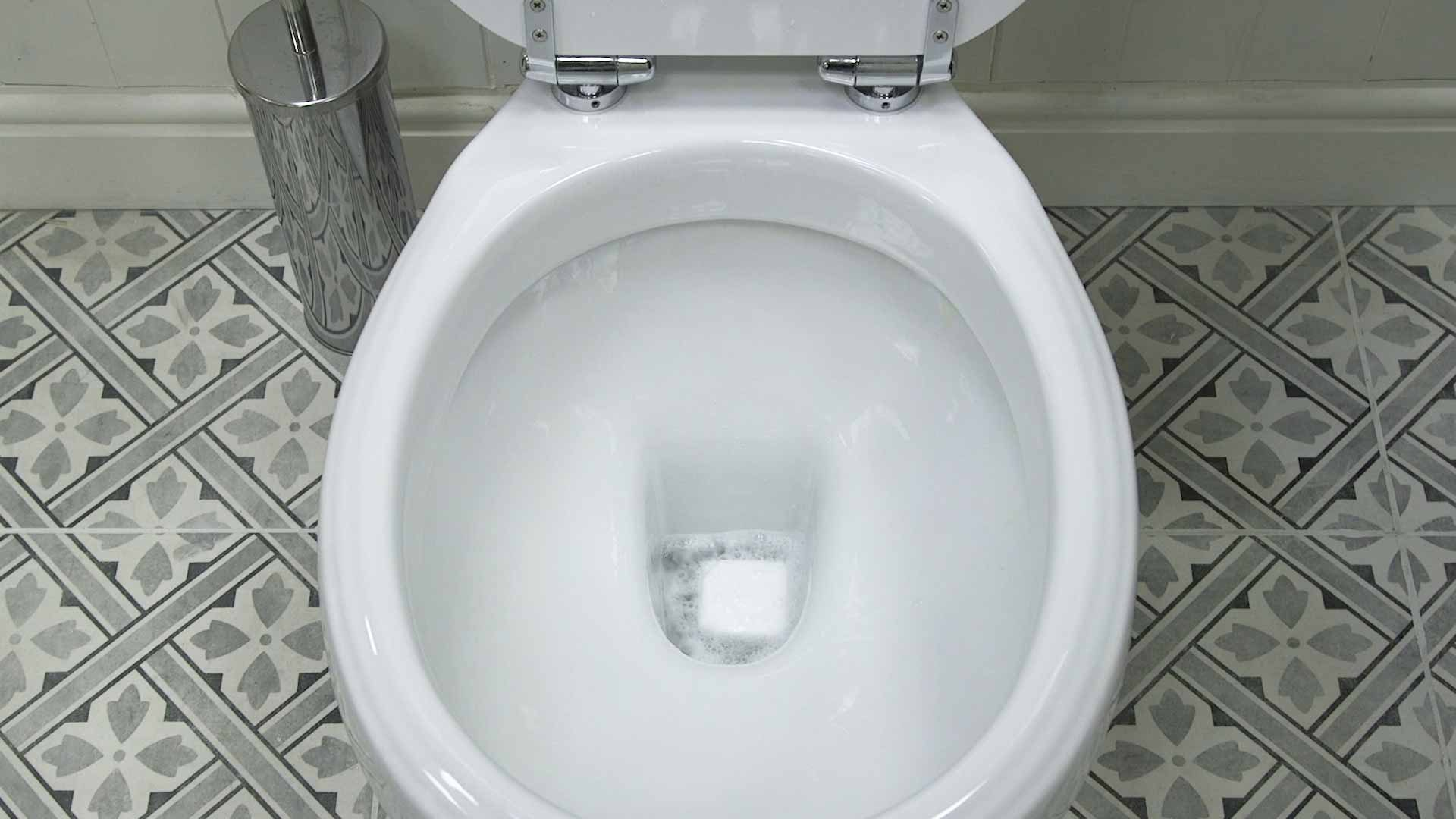 Drop into your toilet