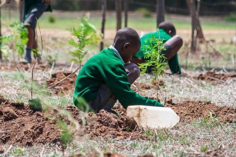 JUST ONE Tree Day in Kenya