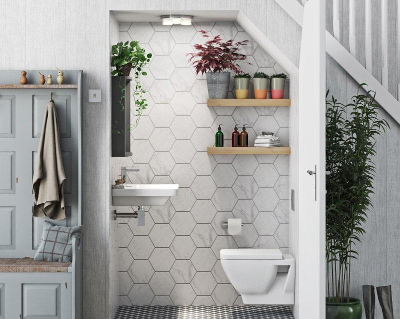 Plant ideas for a small bathroom