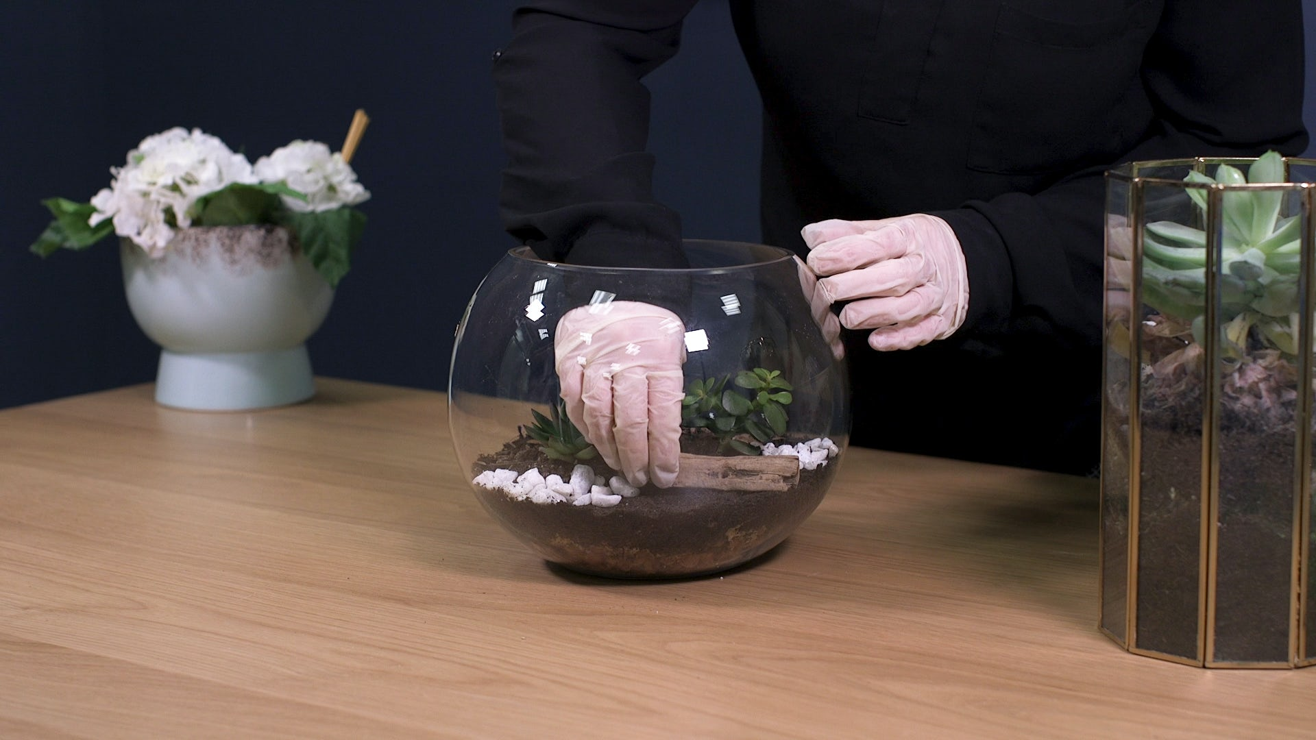 How to make a terrarium step 7