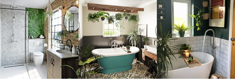 Add greenery to your bathroom with plants