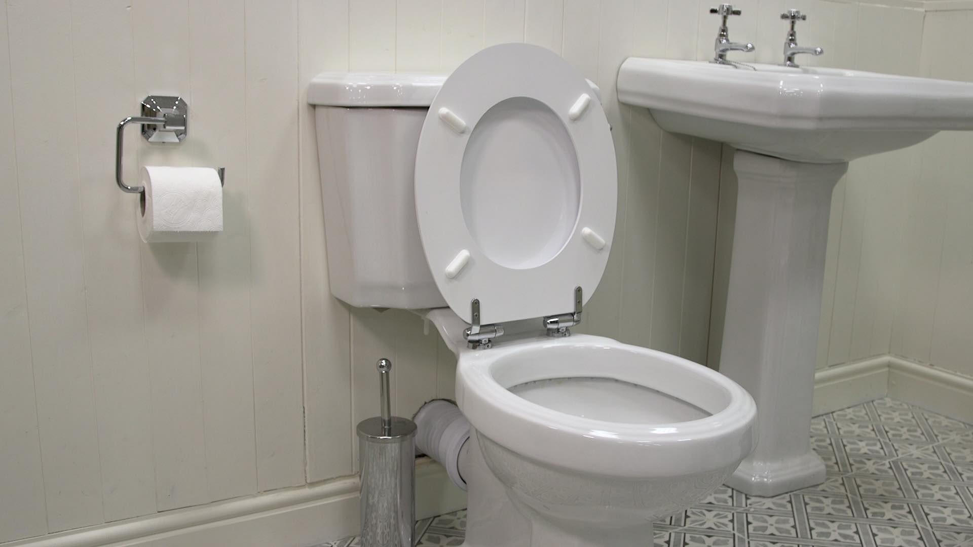Fit the toilet seat