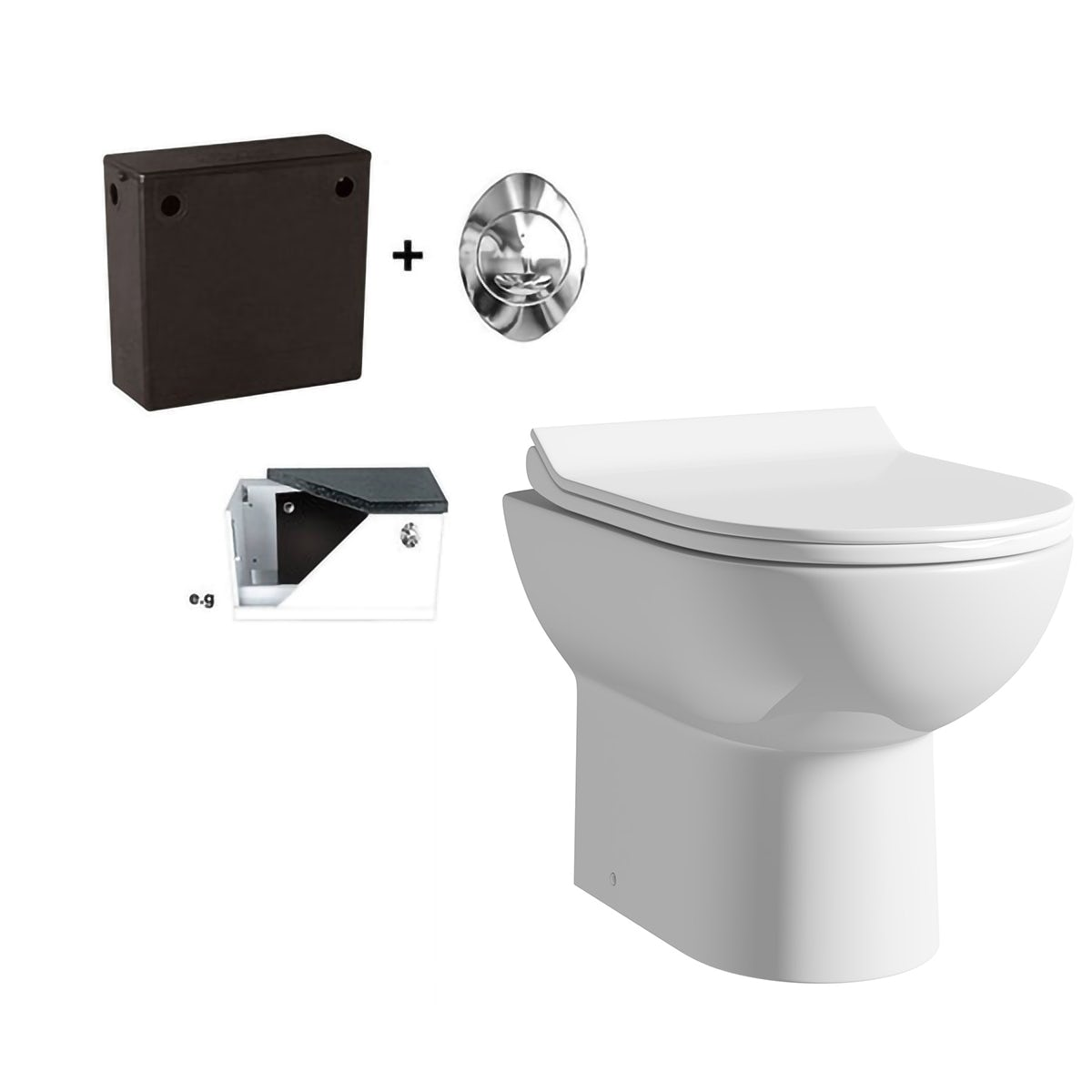 Orchard Eden Contemporary Back To Wall Toilet With Soft