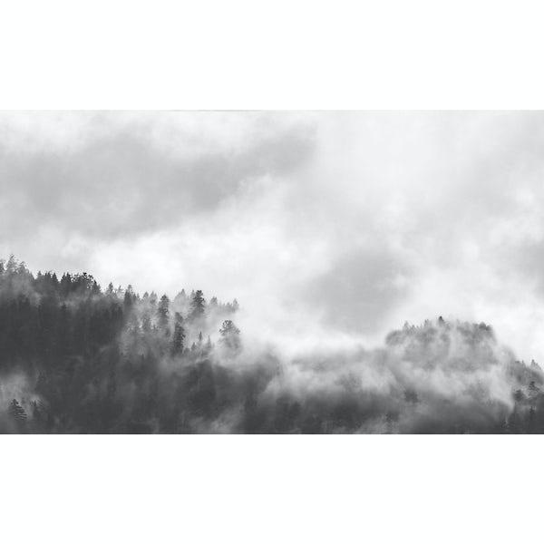 Vista 4mm 3050 x 600 hazy forest acrylic splashback