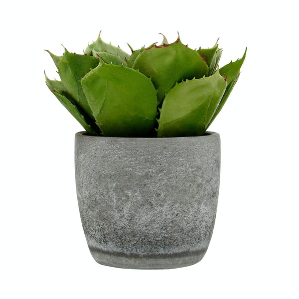 Large artificial succulent in cement pot