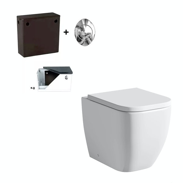 Mode Ellis back to wall toilet and concealed cistern