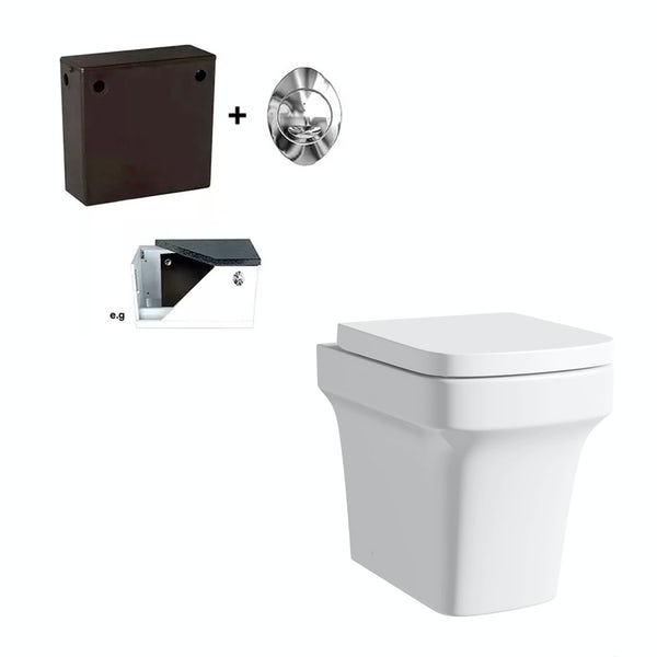 Carter back to wall toilet and concealed cistern