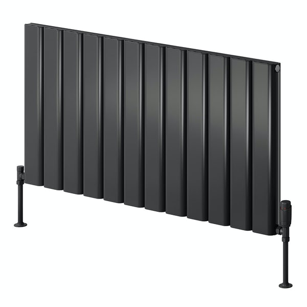 Reina Vicari anthracite grey double horizontal aluminium designer radiator
