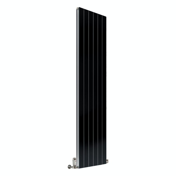 Reina Flat anthracite grey vertical double panel steel designer radiator