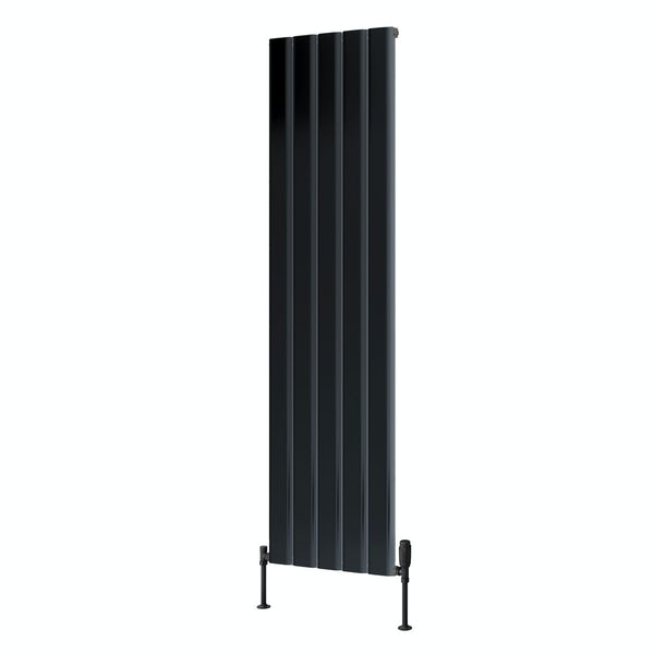 Reina Vicari anthracite grey single vertical aluminium designer radiator